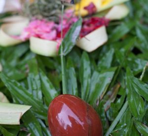 Red Jasper Yoni Egg and Leaves