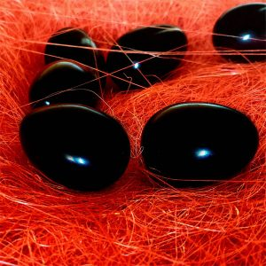 Black Obsidian Yoni Eggs